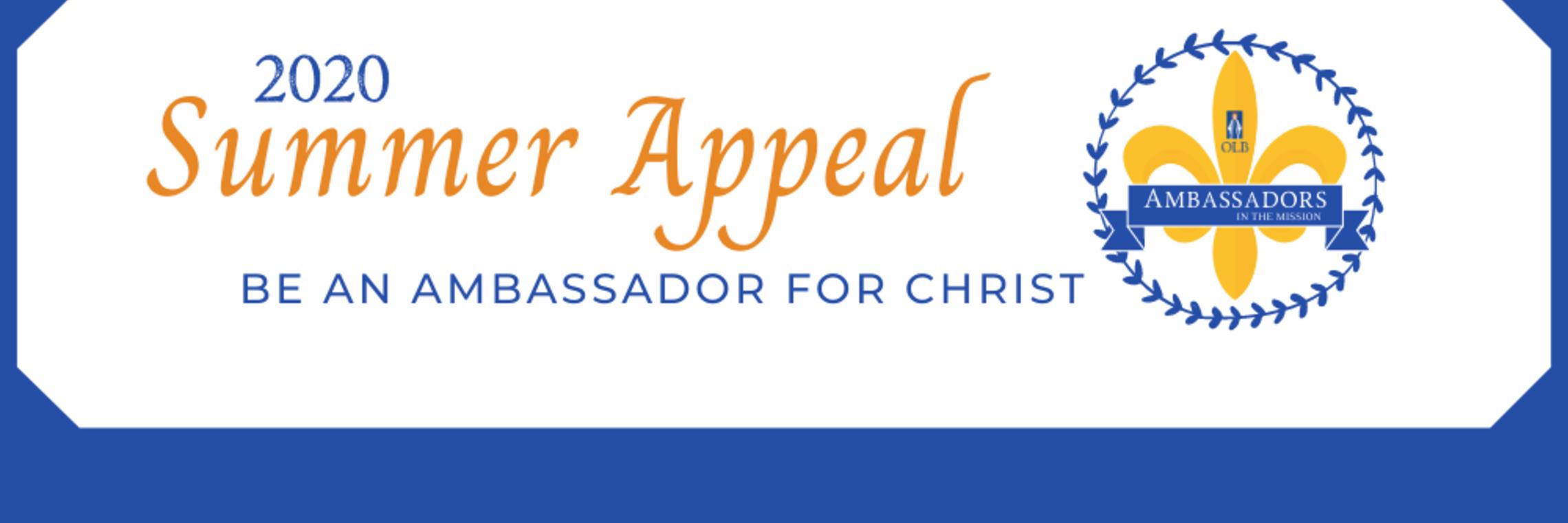 Donate Button Ambassador 2020